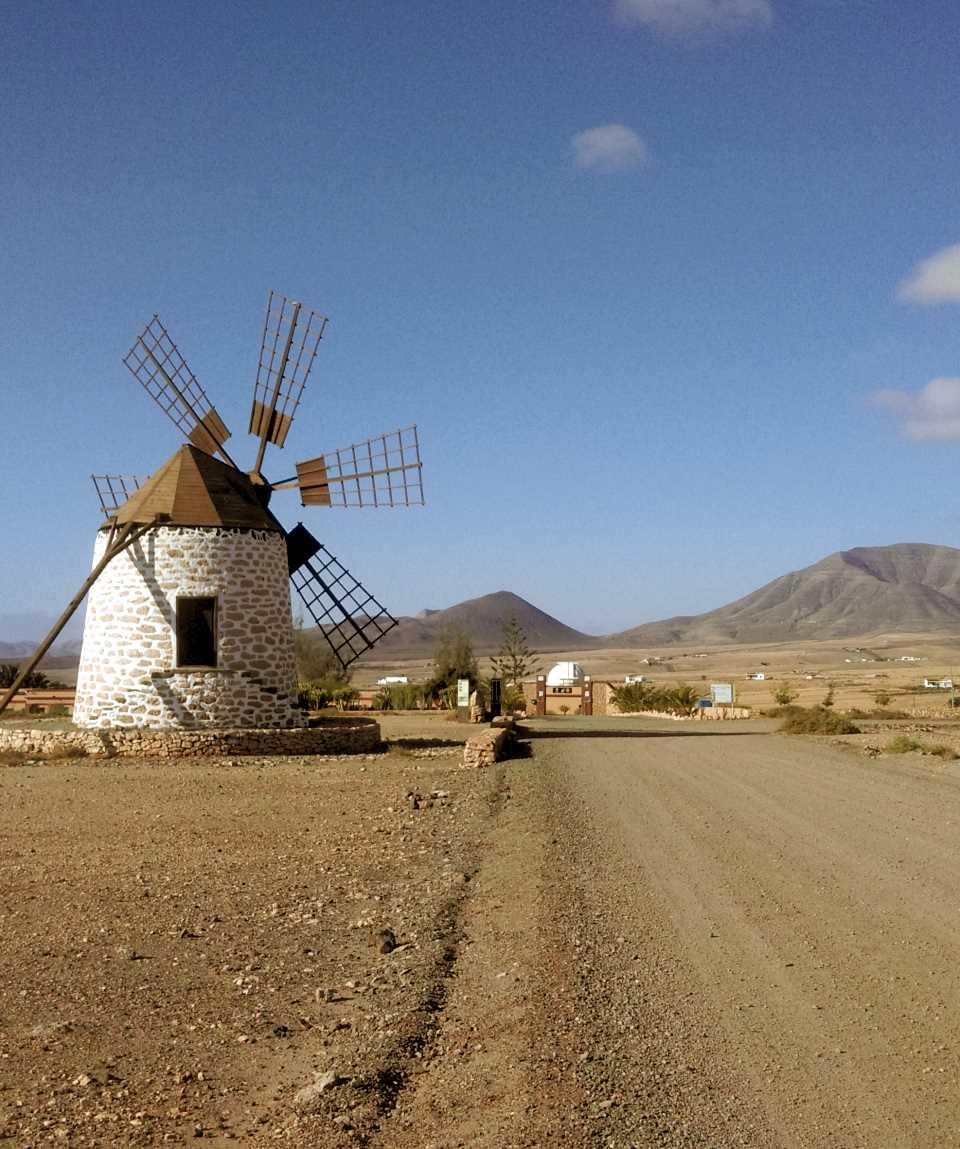 Minibus Tour The Flavours of Fuerteventura