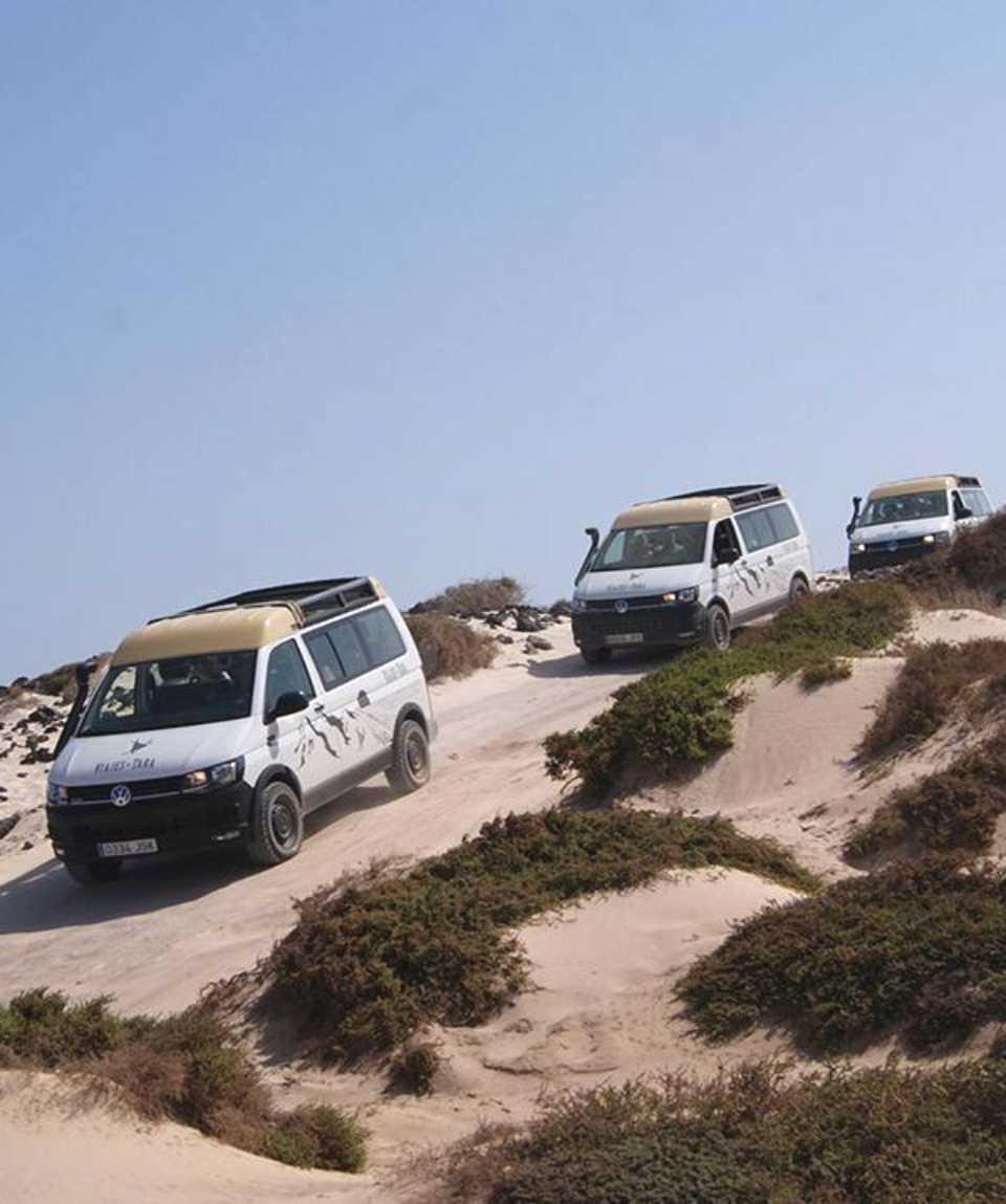 Minibus Tour Inland South Fuerteventura