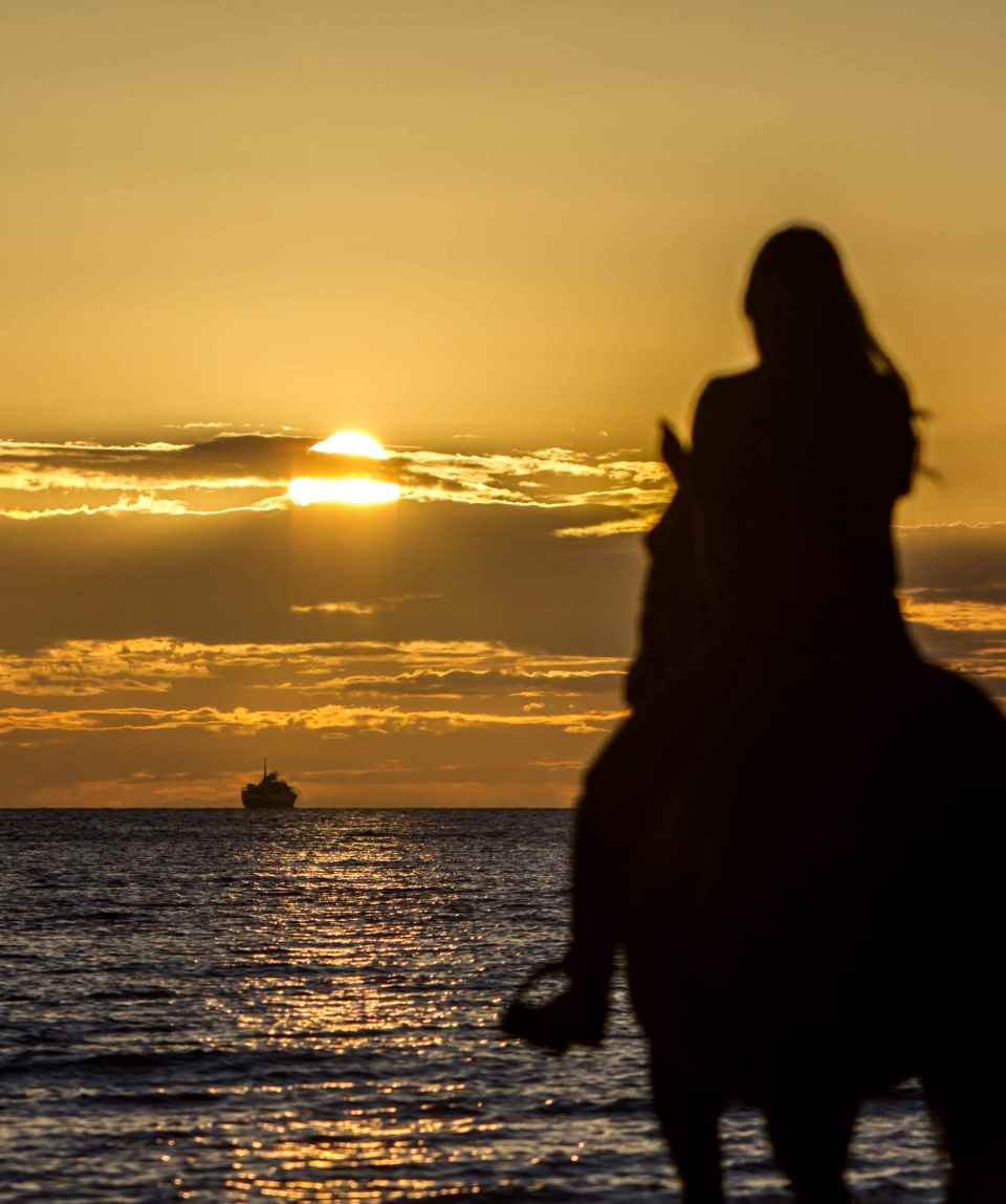 Horse Riding During Sunset by the Sea in El Cotillo
