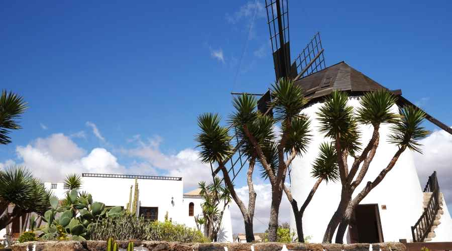 What to see Fuerteventura center